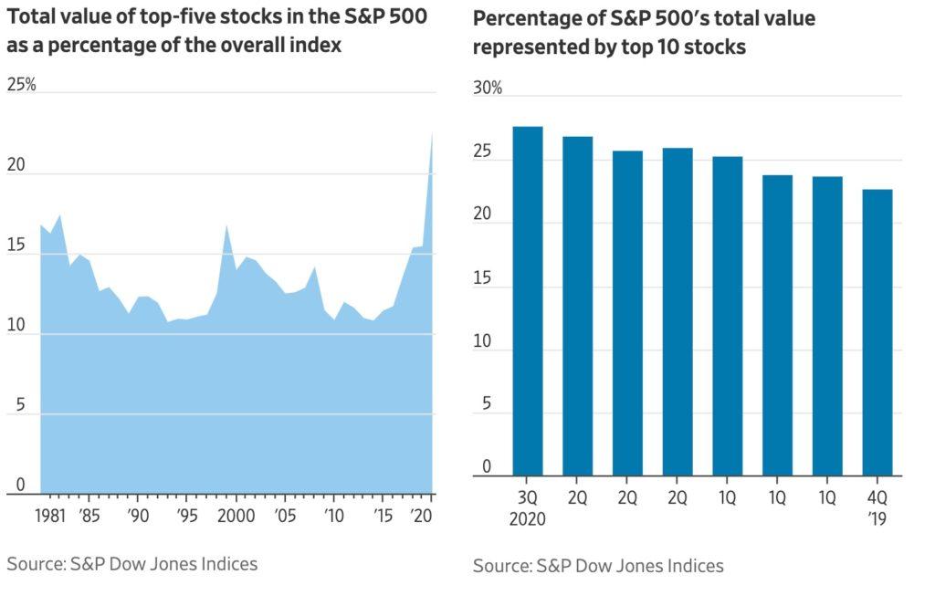 Podil 5 a 10 nejvetsich firem v indexu SP500